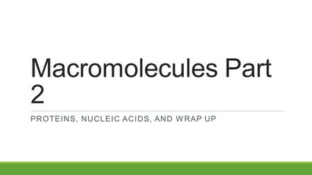 Macromolecules Part 2 PROTEINS, NUCLEIC ACIDS, AND WRAP UP.