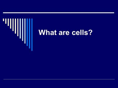 What are cells?. Today, You're going to learn about cells.