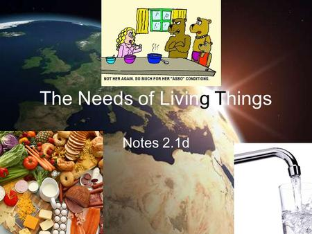 The Needs of Living Things Notes 2.1d. The Needs of Living Things All living things must satisfy their basic needs for water, food, living space, and.