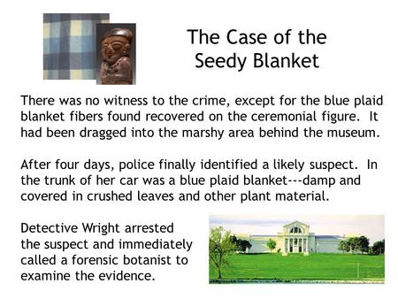 The Case of the Seedy Blanket There was no witness to the crime, except for the blue plaid blanket fibers found recovered on the ceremonial figure. It.