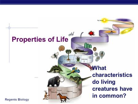 Regents Biology 2007-2008 Properties of Life What characteristics do living creatures have in common?