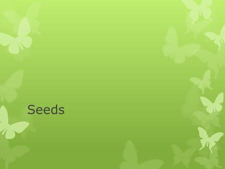 Seeds. Definition  A propagation organ formed in the sexual reproduction cycle of gymnosperms and angiosperms  Consists of:  Protective coat enclosing-