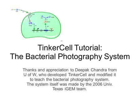 TinkerCell Tutorial: The Bacterial Photography System Thanks and appreciation to Deepak Chandra from U of W, who developed TinkerCell and modified it to.