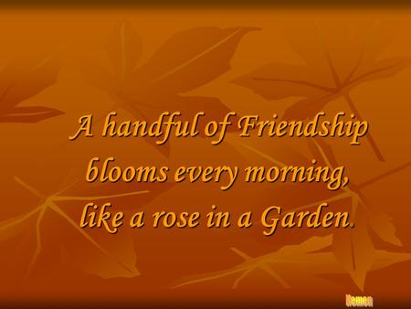A handful of Friendship blooms every morning, like a rose in a Garden.