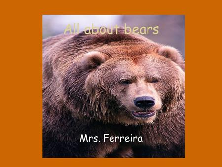 All about bears Mrs. Ferreira. Are all bears mammals and do they live all over the World? All bears are not the same They can look different Live in different.