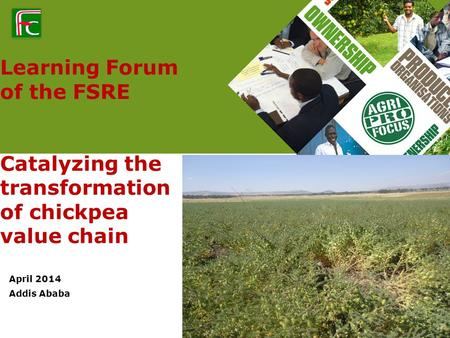 Learning Forum of the FSRE Catalyzing the transformation of chickpea value chain April 2014 Addis Ababa.