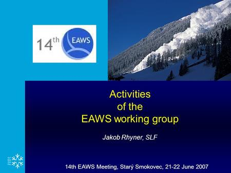 14th EAWS Meeting, Starý Smokovec, 21-22 June 2007 Activities of the EAWS working group Jakob Rhyner, SLF.
