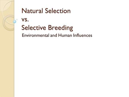 Natural Selection vs. Selective Breeding Environmental and Human Influences.