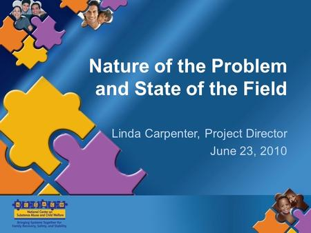 Nature of the Problem and State of the Field Linda Carpenter, Project Director June 23, 2010.