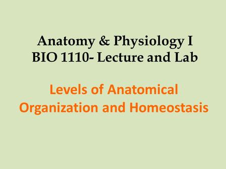 Anatomy & Physiology I BIO 1110- Lecture and Lab Levels of Anatomical Organization and Homeostasis.