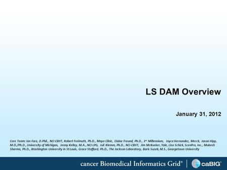 1 LS DAM Overview January 31, 2012 Core Team: Ian Fore, D.Phil., NCI CBIIT, Robert Freimuth, Ph.D., Mayo Clinic, Elaine Freund, Ph.D., 3 rd Millennium,