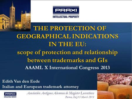 THE PROTECTION OF GEOGRAPHICAL INDICATIONS IN THE EU: scope of protection and relationship between trademarks and GIs AAAML X International Congress.