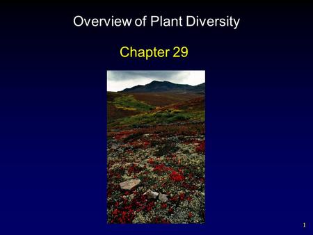 1 Overview of Plant Diversity Chapter 29. 2 Outline The Evolutionary Origins of Plants Plant Life Cycles Mosses, Liverworts, and Hornworts Features of.