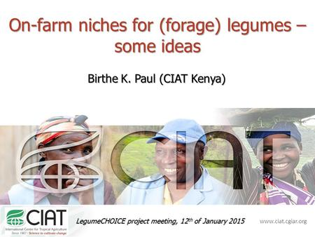 Www.ciat.cgiar.org On-farm niches for (forage) legumes – some ideas Birthe K. Paul (CIAT Kenya) LegumeCHOICE project meeting, 12 th of January 2015.