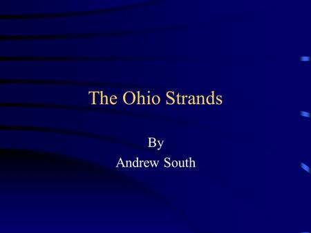 The Ohio Strands By Andrew South. America Strand.