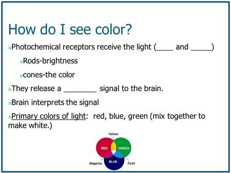 How do I see color? Photochemical receptors receive the light (____ and _____) Rods-brightness cones-the color They release a ________ signal to the brain.