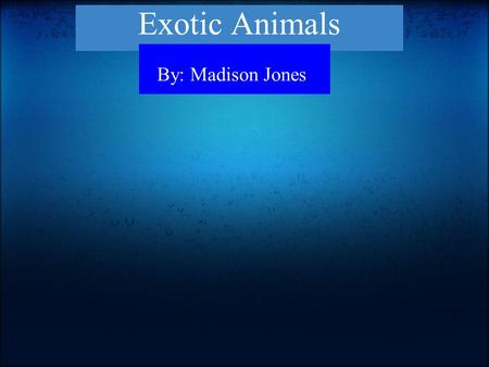 Exotic Animals By: Madison Jones. We shouldn't be able to keep exotic animals. Another reason is because they get too big. SO WHY OWN ONE? Exotic animals.