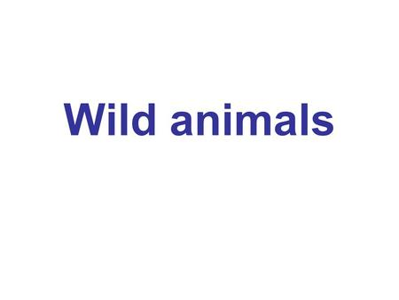 Wild animals. It has got a long nose It has black and orange stripes.