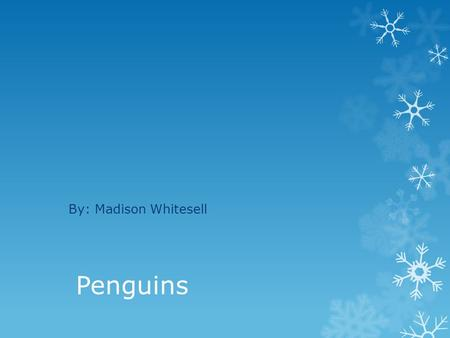 By: Madison Whitesell Penguins.