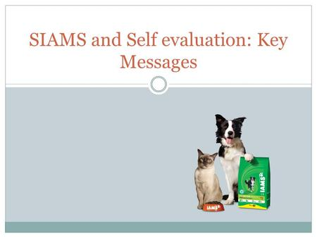 SIAMS and Self evaluation: Key Messages. Key Players.