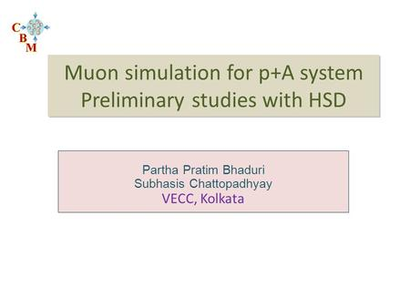 Muon simulation for p+A system Preliminary studies with HSD Partha Pratim Bhaduri Subhasis Chattopadhyay VECC, Kolkata.