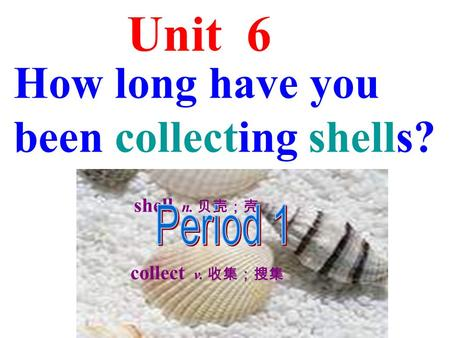 Unit 6 How long have you been collecting shells? collect v. 收集;搜集 shell n. 贝壳;壳.