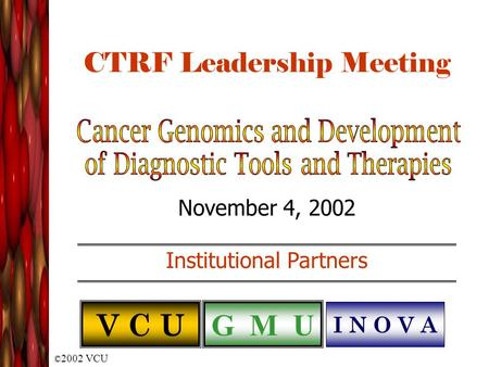 © 2002 VCU CTRF Leadership Meeting November 4, 2002 Institutional Partners V C U G M U I N O V A.