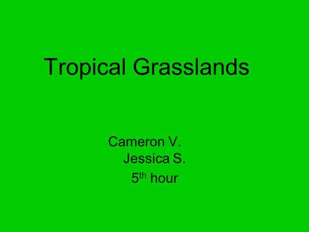 Tropical Grasslands Cameron V. Jessica S. 5 th hour.
