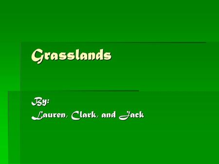 Grasslands By: Lauren, Clark, and Jack. Location Grasslands are located in Africa, Australia, South America, and India. The largest example of the grasslands.