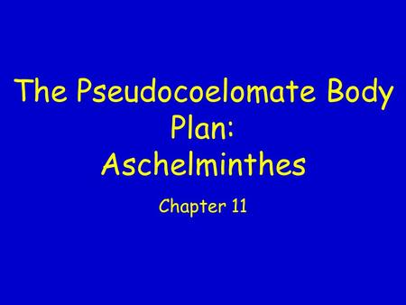 The Pseudocoelomate Body Plan: Aschelminthes