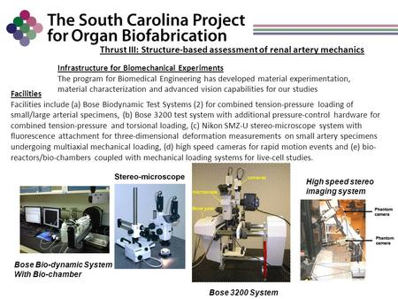 Thrust III: Structure-based assessment of renal artery mechanics Infrastructure for Biomechanical Experiments The program for Biomedical Engineering has.