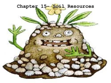 Chapter 15- Soil Resources Ecological Succession.