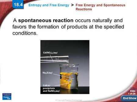 End Show Slide 1 of 28 © Copyright Pearson Prentice Hall > Entropy and Free Energy Free Energy and Spontaneous Reactions A spontaneous reaction occurs.