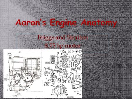 Briggs and Stratton 8.75 hp motor.  Briggs and Stratton is the worlds largest manufacturer of air-cooled gasoline engines, producing an average of 11.