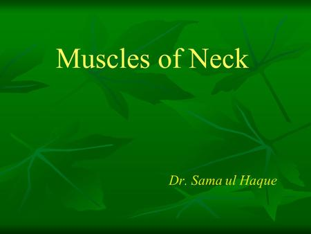 Muscles of Neck Dr. Sama ul Haque. Objectives Identify the superficial and deep muscles of the neck with their origin, insertion, nerve supply and actions.