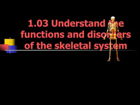 1.03 Understand the functions and disorders of the skeletal system.