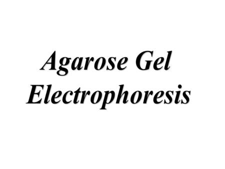 Gel electrophoresis is a method for separation and analysis of macromolecules(DNA, RNA and proteins) and their fragments, based on their size and charge.