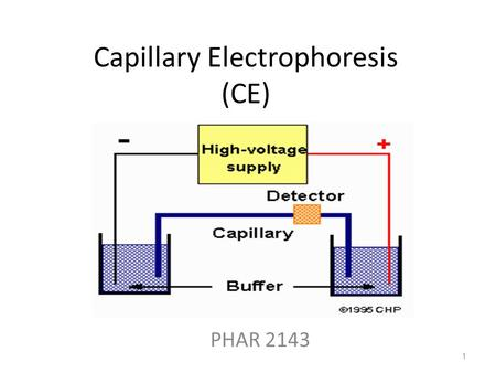 Capillary Electrophoresis (CE) PHAR 2143 1. Lecture Objectives By the end of the lecture, students should be able to: 1.Illustrate the CE instrumental.