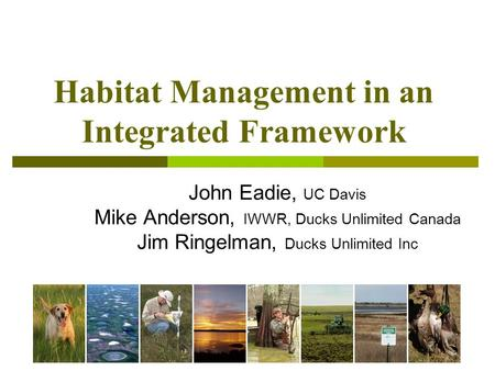 Habitat Management in an Integrated Framework John Eadie, UC Davis Mike Anderson, IWWR, Ducks Unlimited Canada Jim Ringelman, Ducks Unlimited Inc.