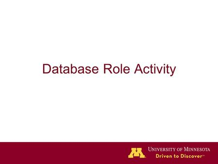 Database Role Activity. DB Role and Privileges Worksheet.