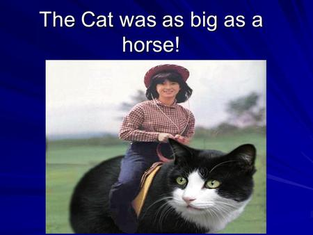 The Cat was as big as a horse! The Amazing Hyperbole! Grade 7: English Language Arts.