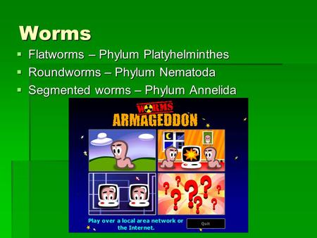 Worms  Flatworms – Phylum Platyhelminthes  Roundworms – Phylum Nematoda  Segmented worms – Phylum Annelida.