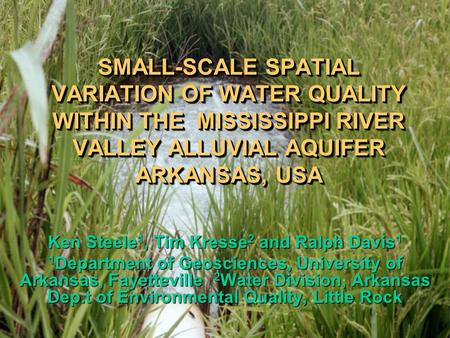 SMALL-SCALE SPATIAL VARIATION OF WATER QUALITY WITHIN THE MISSISSIPPI RIVER VALLEY ALLUVIAL AQUIFER ARKANSAS, USA Ken Steele 1, Tim Kresse 2 and Ralph.