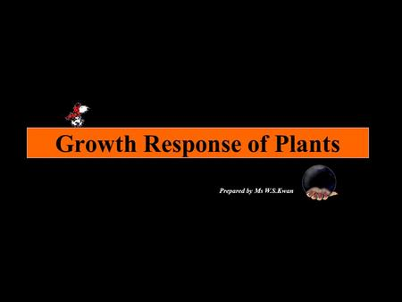Growth Response of Plants Prepared by Ms W.S.Kwan.