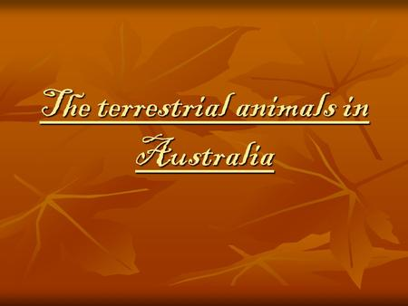 The terrestrial animals in Australia. The marsupials are animals which carry their babies in a pouch (like the kangaroo), in which they grow. Here are.