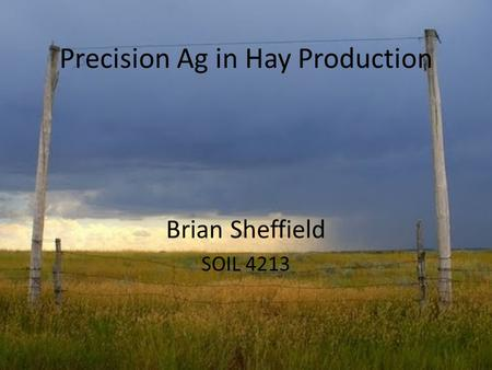 Precision Ag in Hay Production Brian Sheffield SOIL 4213.