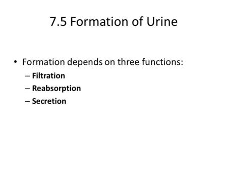 7.5 Formation of Urine Formation depends on three functions: – Filtration – Reabsorption – Secretion.