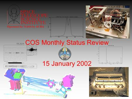SPACE TELESCOPE SCIENCE INSTITUTE Operated for NASA by AURA COS Monthly Status Review 15 January 2002.