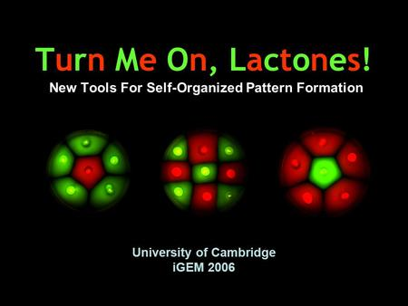 Turn Me On, Lactones! New Tools For Self-Organized Pattern Formation University of Cambridge iGEM 2006.