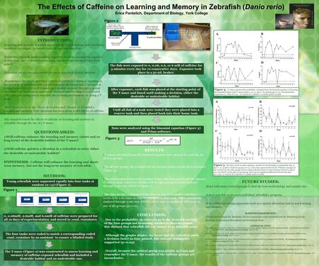 The Effects of Caffeine on Learning and Memory in Zebrafish (Danio rerio) Erica Pantelich, Department of Biology, York College INTRODUCTION:  Learning.